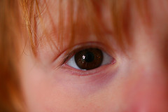 Child's Eye